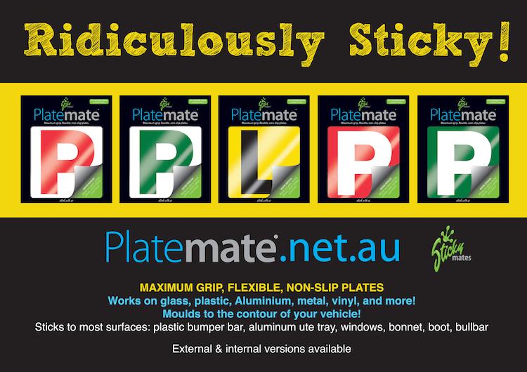 magnetic l p plates